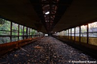 Abandoned Empty Chicken Farm