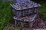 Abandoned Grey TransportBoxes