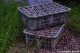 Abandoned Grey Transport Boxes