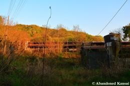 Chicken Farm Sunset