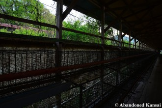 Deserted Chicken Cages