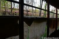 Deserted Chicken Farm