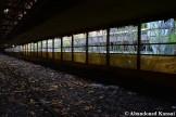 Deserted Shed