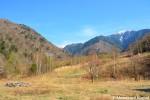 Abandoned Nagano SkiSlope