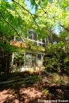 Rundown Overgrown House