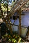 Abandoned Tube Mail
