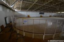 Deserted Skate Rink