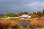 Rainy Japanese AutumnDay
