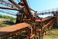 Rusty Macadam Plant