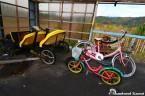 Abandoned Bikes