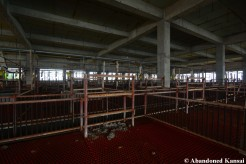 Abandoned Japanese Pig Farm