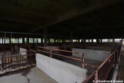 Deserted Pig Stall