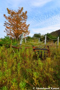 Overgrown Boxing Ring