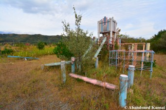 Overgrown Playground
