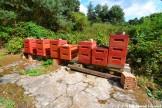 Beehives At An Abandoned Military Base