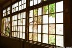 Broken School Windows