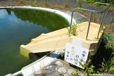 Abandoned Kiddie Water Slide