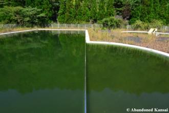 Greenest Pool