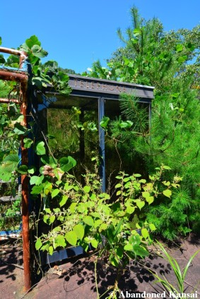 Overgrown Telephone Booth