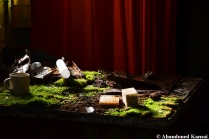 Moss Covered Desk