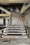 Abandoned Concrete Staircase