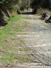 Abandoned Railway Track