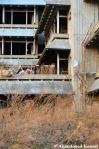 Abandoned Vandalized Overgrown