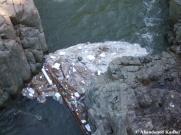 Dirty Japanese River