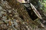 Abandoned Landslide Car