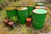Abandoned Oil Barrels
