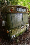Best Abandoned Bus