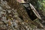 Destroyed Landslide Car