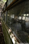 Dirty, Rusty, AbandonedBus