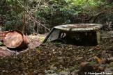 Landslide Car