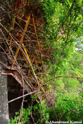Overgrown Quarry Equipment