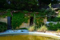 Overgrown Resort Hotel Pool