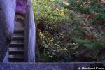 Concrete Outdoor Staircase