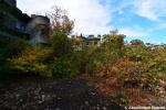 Overgrown Construction Ruin