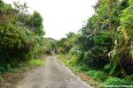 Road To The Nakagusuku HotelRuin