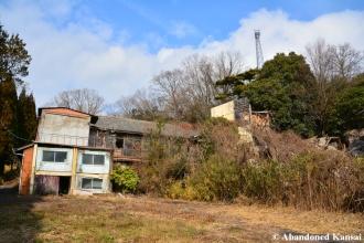 A Dime A Dozen In Japan