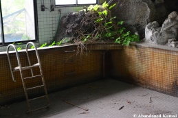 Abandoned Volcano Hotel Pool