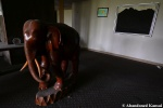 Abandoned Wood CarvedElephant
