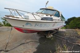 Dolphin Hotel Boat