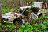 Abandoned Crashed Car