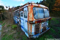Beautifully Decayed Bus
