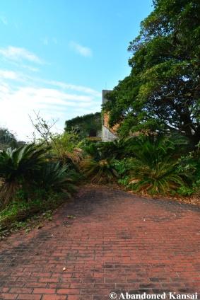 Overgrown Rest Area