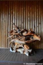 Abandoned Wood Sculpture