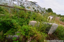 Abandoned Damaged Glasshouse