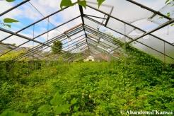 Abandoned German Greenhouse