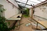 Deserted Plant NurseryShed